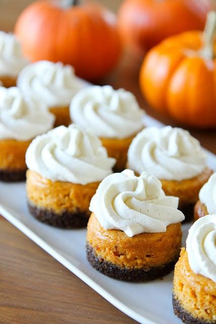 Mini Pumpkin Cheesecake Recipe