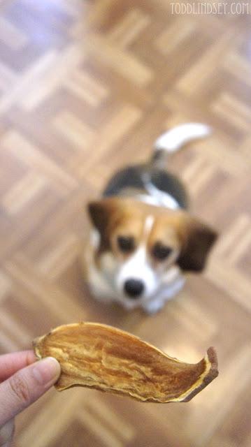 Sweet Potato Dog Chews via Todd and Lindsey