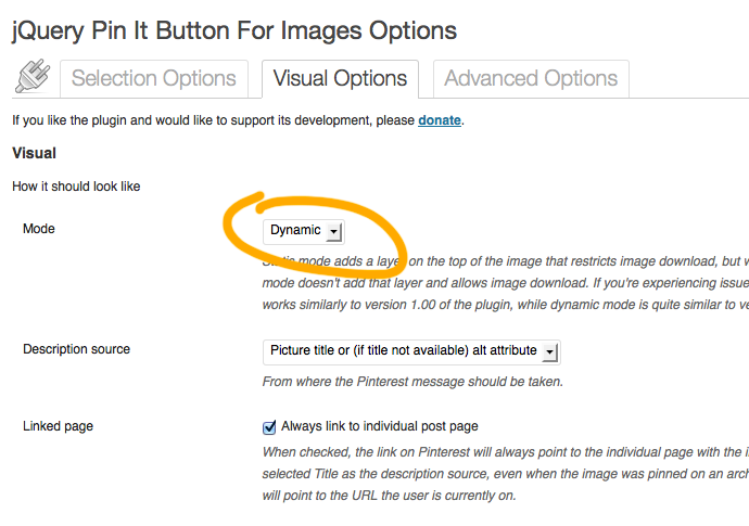Best Pin It Button Plugin Settings