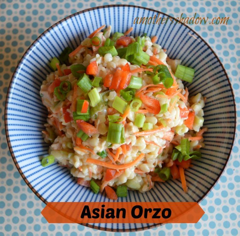 Teryaki Chicken Orzo via A Mothers Shadow