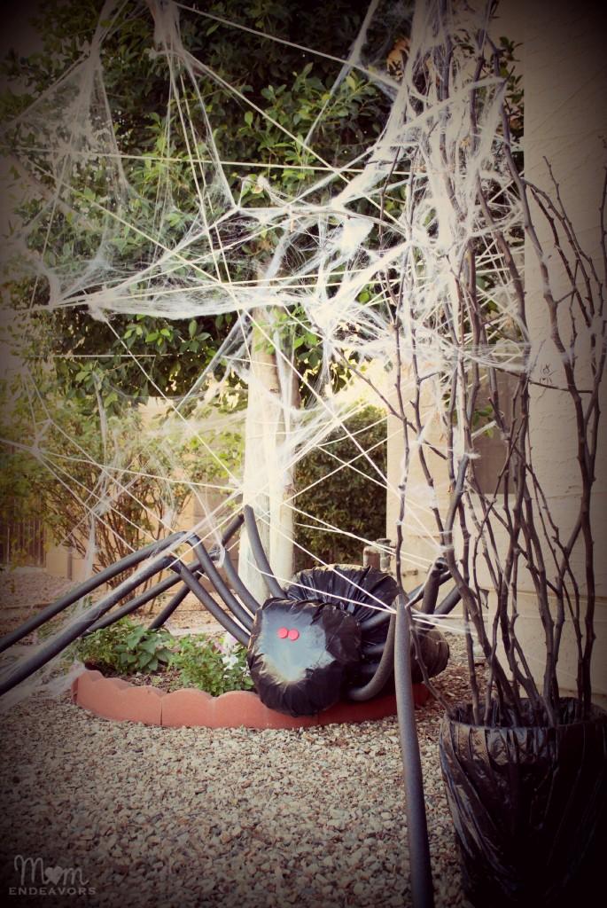 Giant spider in spiderweb