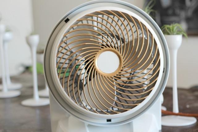 Vintage-stye painted fan