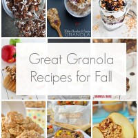 12 Great Granola Recipes for Fall via @SnapConf - Perfect for busy mornings and fall flavors