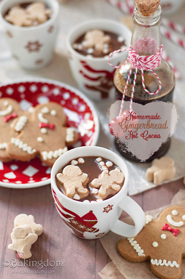Holiday beverages for any occasion: gingerbread hot cocoa is a must-have!