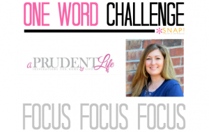 One Word Goal Challenge: A Prudent Life | Focus via @Snapconf