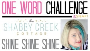 One Word Goal Shabby Creek Cottage