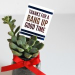 Fourth of July Hostess Gift