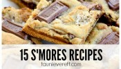 15 S'mores Recipes feature