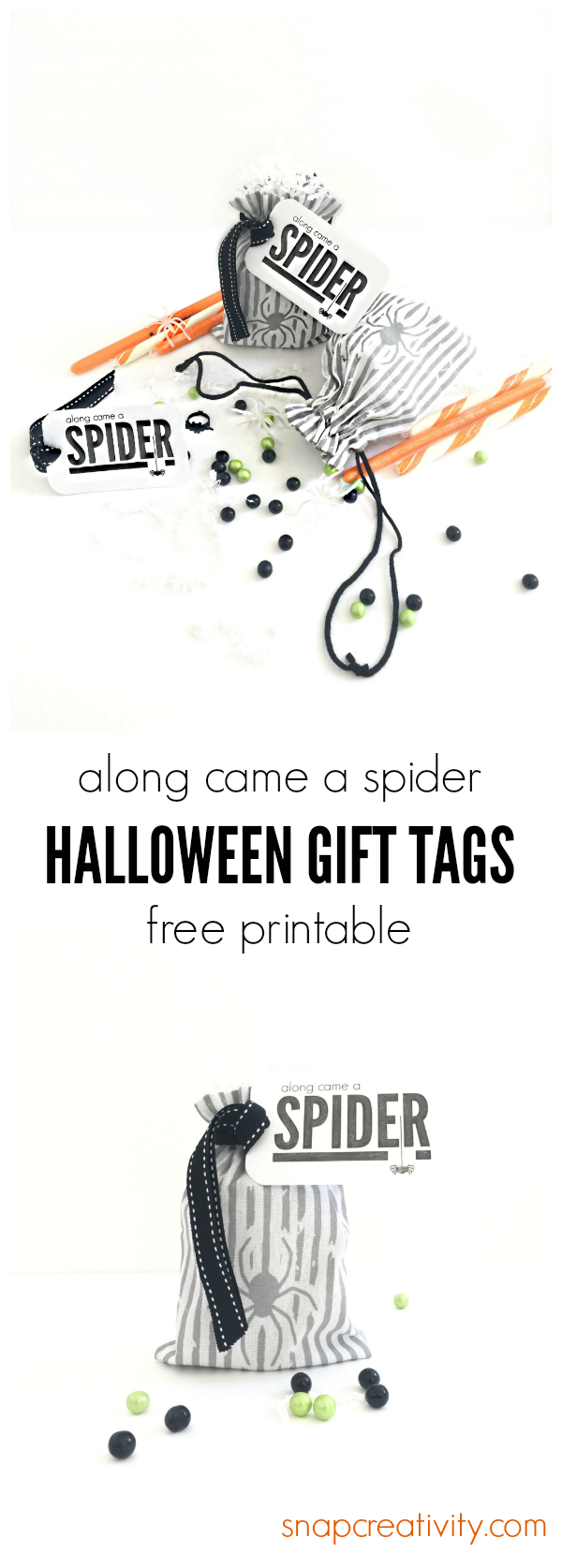 along-came-a-spider-pinterest