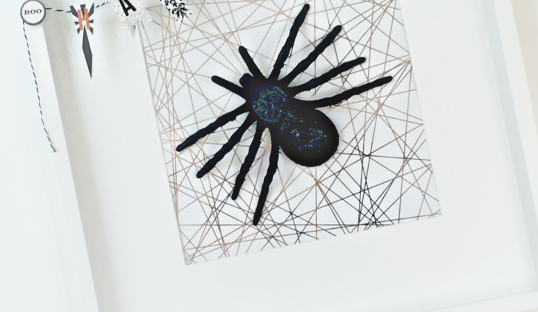 Halloween Spider Specimen Art