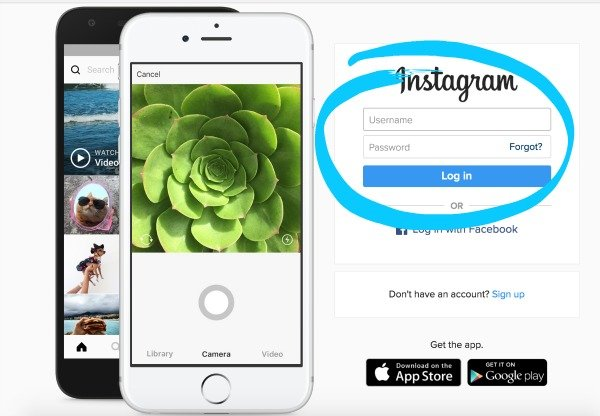 Learn how to embed published Instagram posts onto your blog or website.