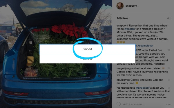 how-to-embed-instagram-4
