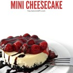 Instant Pot Mini Cheesecake with Oreo Crust