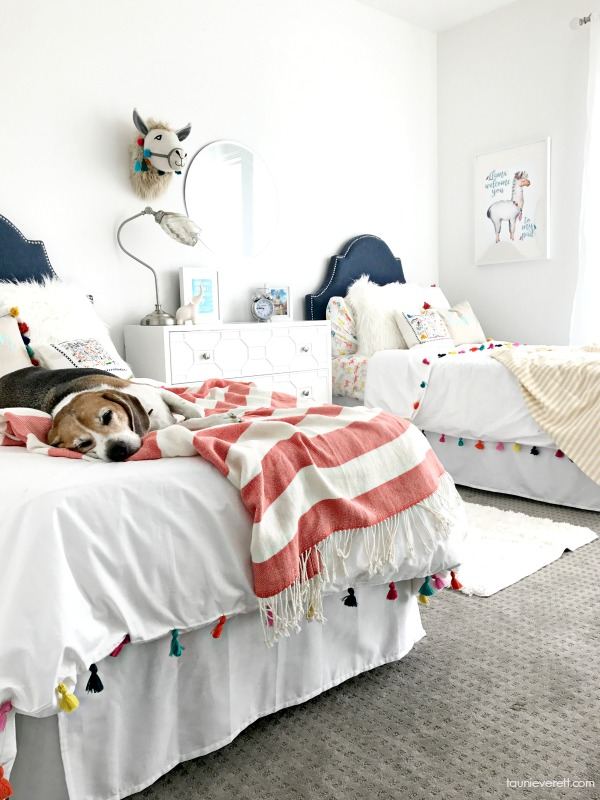 Modern, bright guest room with twin beds.