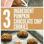 Three ingredient pumpkin chocolate chip cookies pinterest © tauni everett