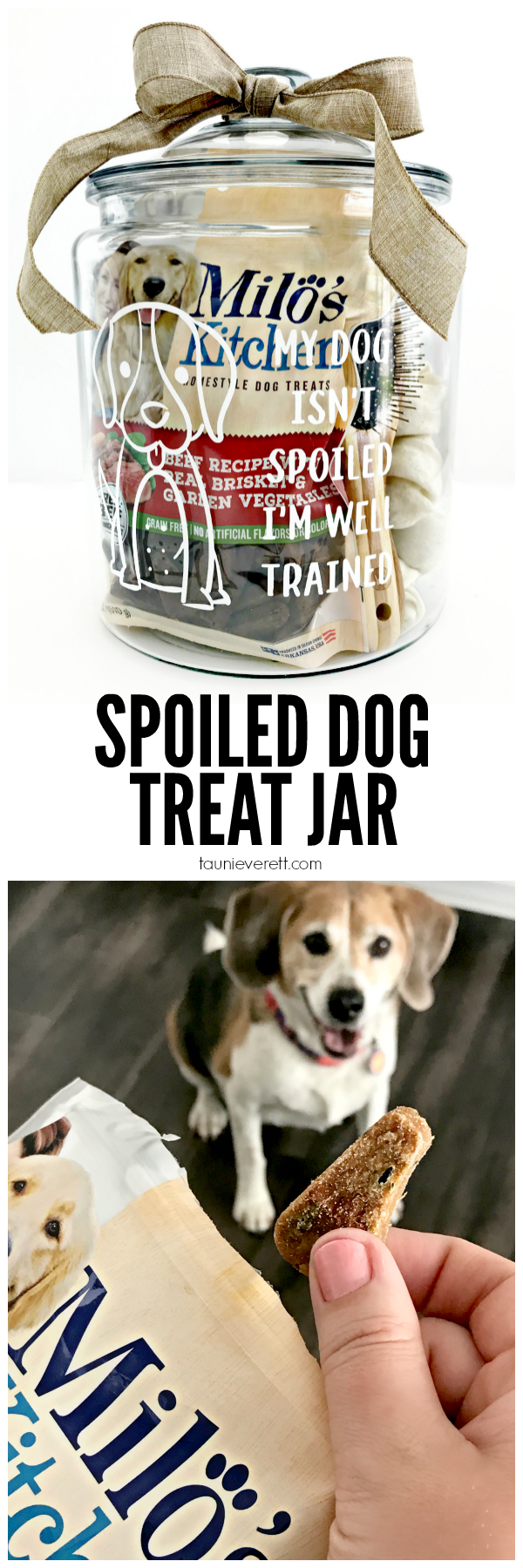 DIY Spoiled Dog Treat Jars with two FREE cut files #silhouette #cricut #cutfiles #dog #dogtreat