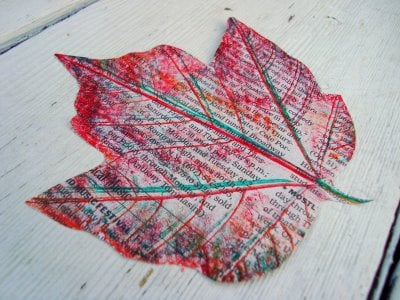 Fall Leaves via Maya Made