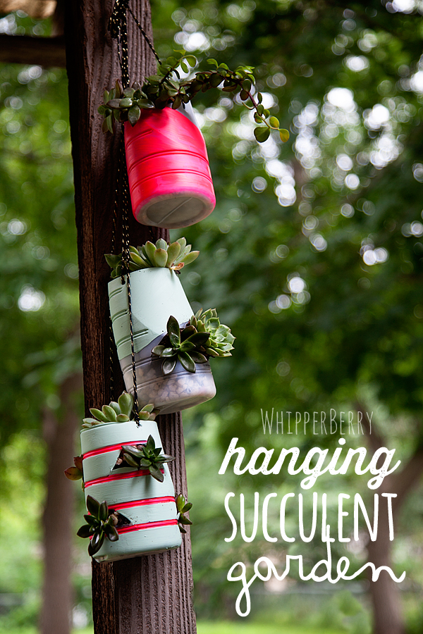 Hanging Succulent Garden via Whipperberry