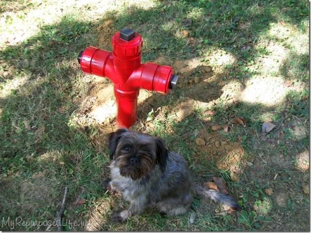 PVC Fire Hydrant
