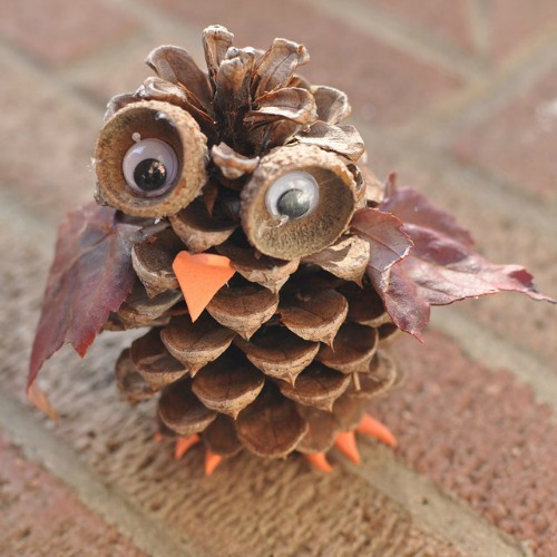 Pine cone owl. These would be so cute to make with the kids!